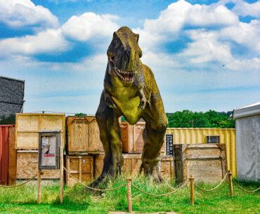 field-station-dinosaurs